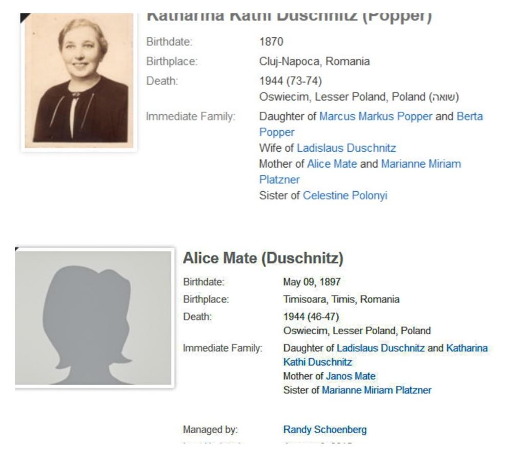 Magazinul Duschnitz şi Holocaustul
